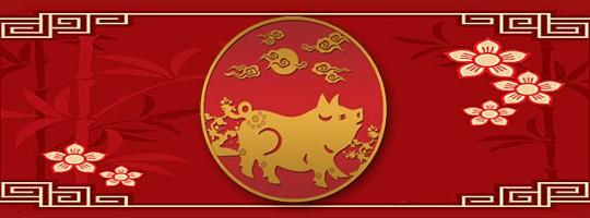 Γουρούνι - Κινέζικο ζώδιο