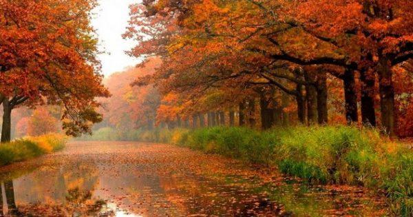Τι φέρνει το φετινό Φθινόπωρο σε κάθε ζώδιο?